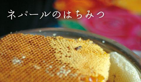 image_hachimitsu.jpg