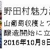 【終了しました】 野田村満喫ツアー